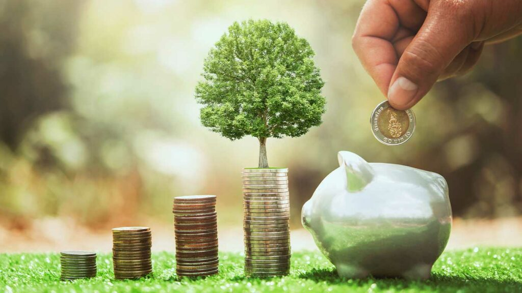 Sinking Funds vs. Savings Account