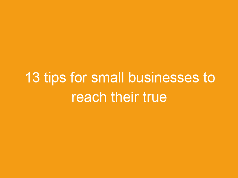 13 tips for small businesses to reach their true potential 2235